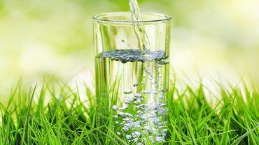 Wasser Trinkwasser Wasserglas Glas Natur Umwelt Umweltschutz
